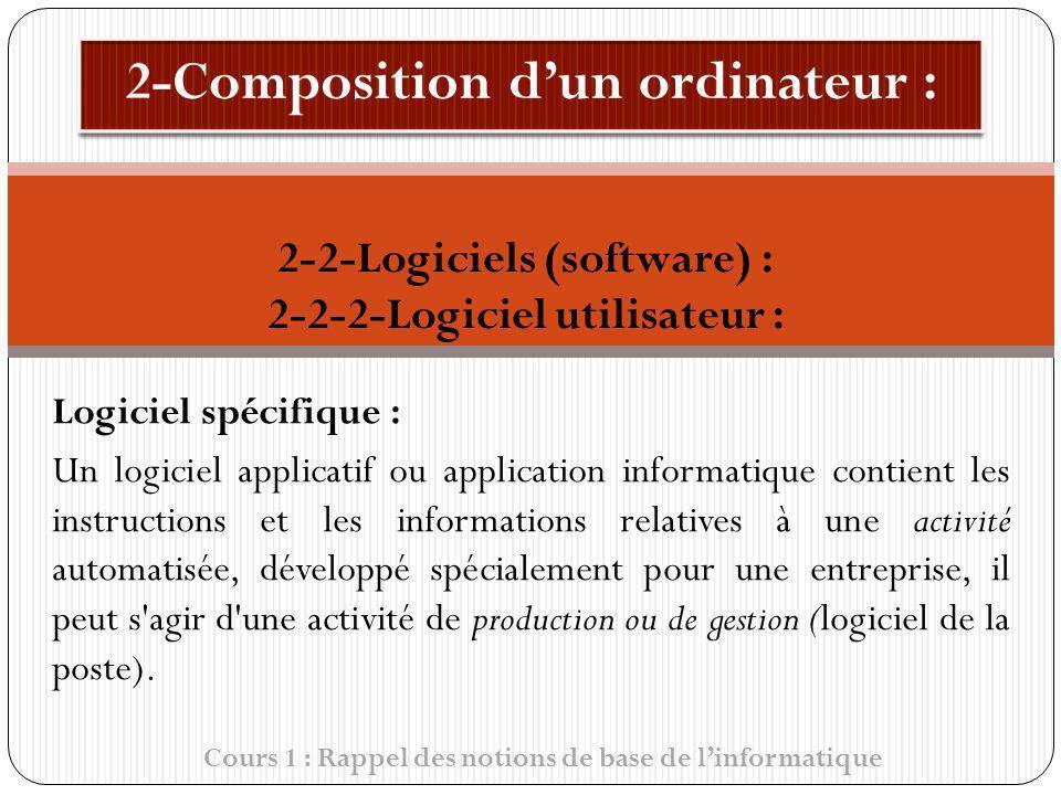 Logiciel spécifique : Un logiciel applicatif ou application informatique contient les instructions et les informations relatives à une activité automa