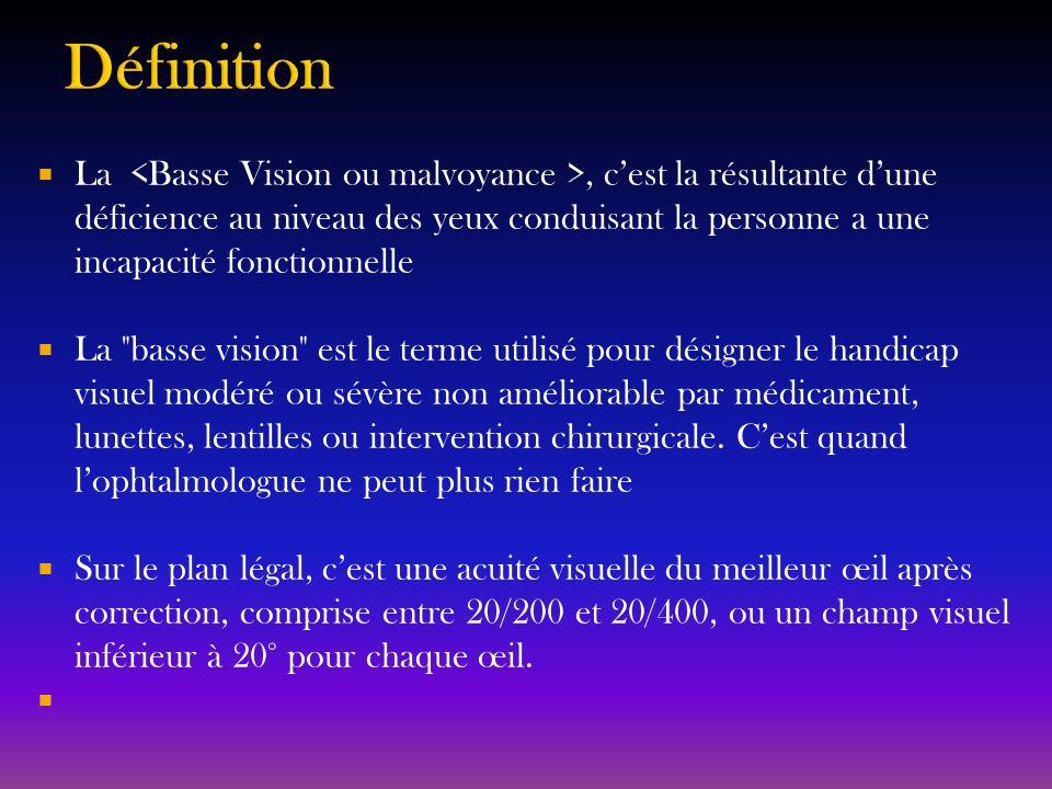 Absence de spécialiste forme en Basse vision Absence dintérêt pour cette branche de lophtalmologie par les décideurs de la Santé publique Aucune clinique de Basse vision existante