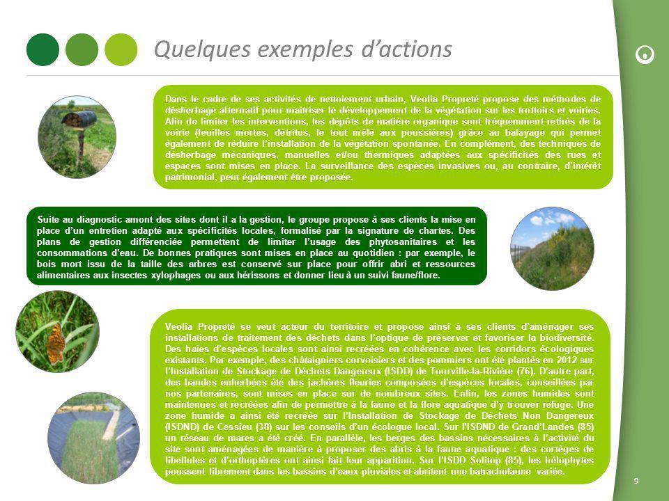 9 Quelques exemples dactions Dans le cadre de ses activités de nettoiement urbain, Veolia Propreté propose des méthodes de désherbage alternatif pour