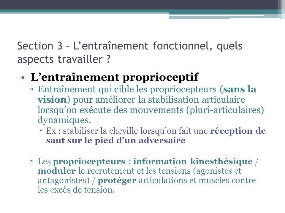 Section 3 – Lentraînement fonctionnel, quels aspects travailler ? Lentraînement proprioceptif Entraînement qui cible les propriocepteurs (sans la visi