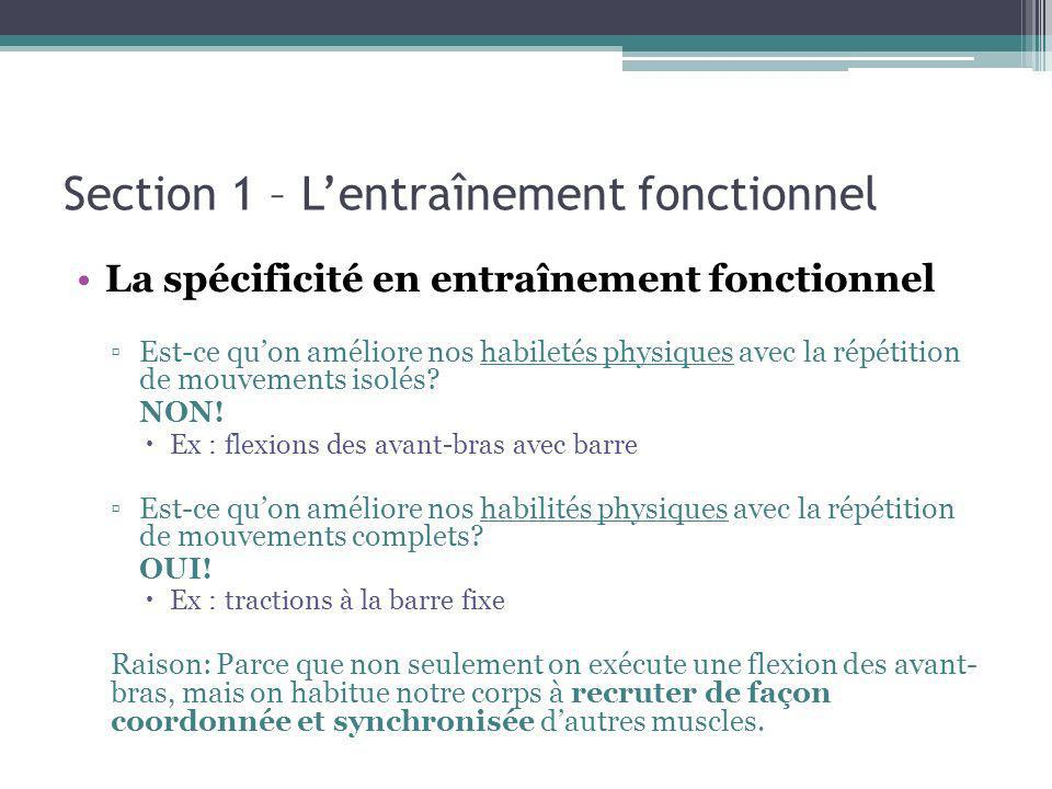 Section 3 – Lentraînement fonctionnel, quels aspects travailler .