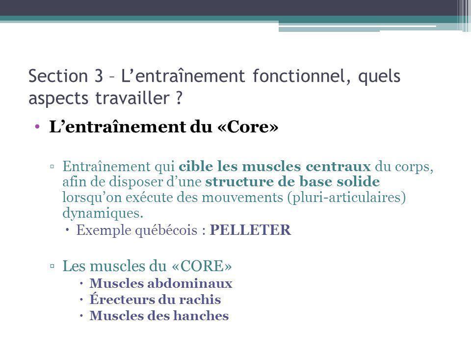 Section 3 – Lentraînement fonctionnel, quels aspects travailler ? Lentraînement du «Core» Entraînement qui cible les muscles centraux du corps, afin d