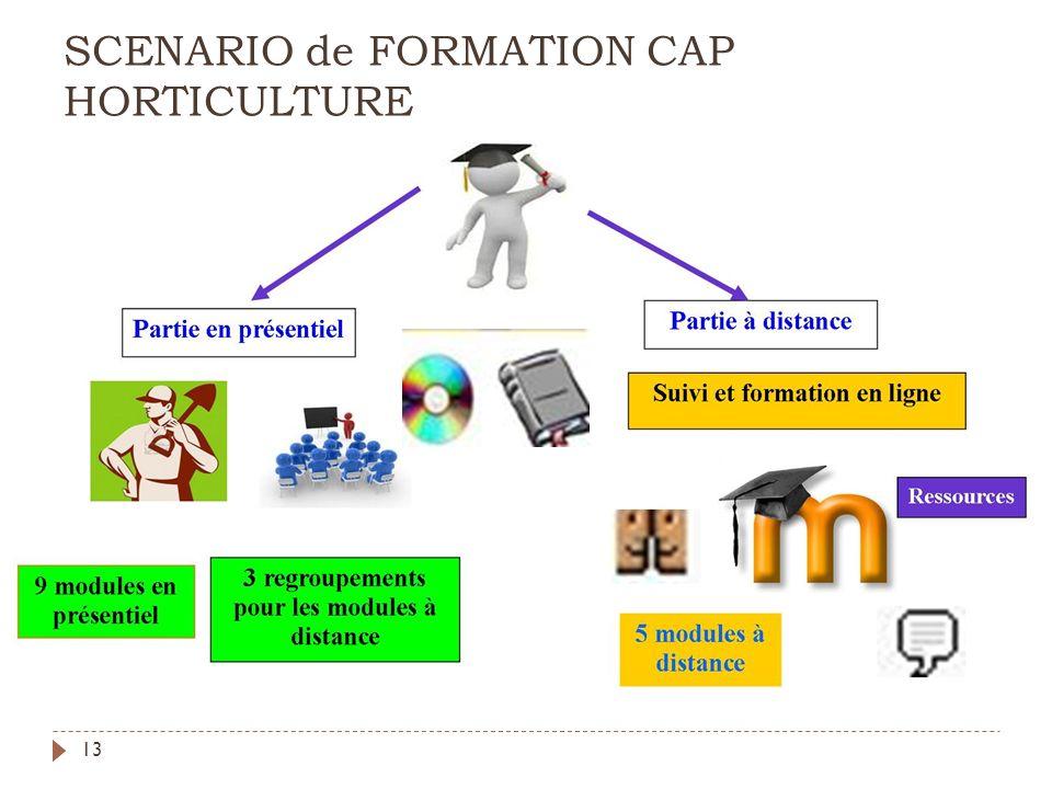 SCENARIO de FORMATION CAP HORTICULTURE 13