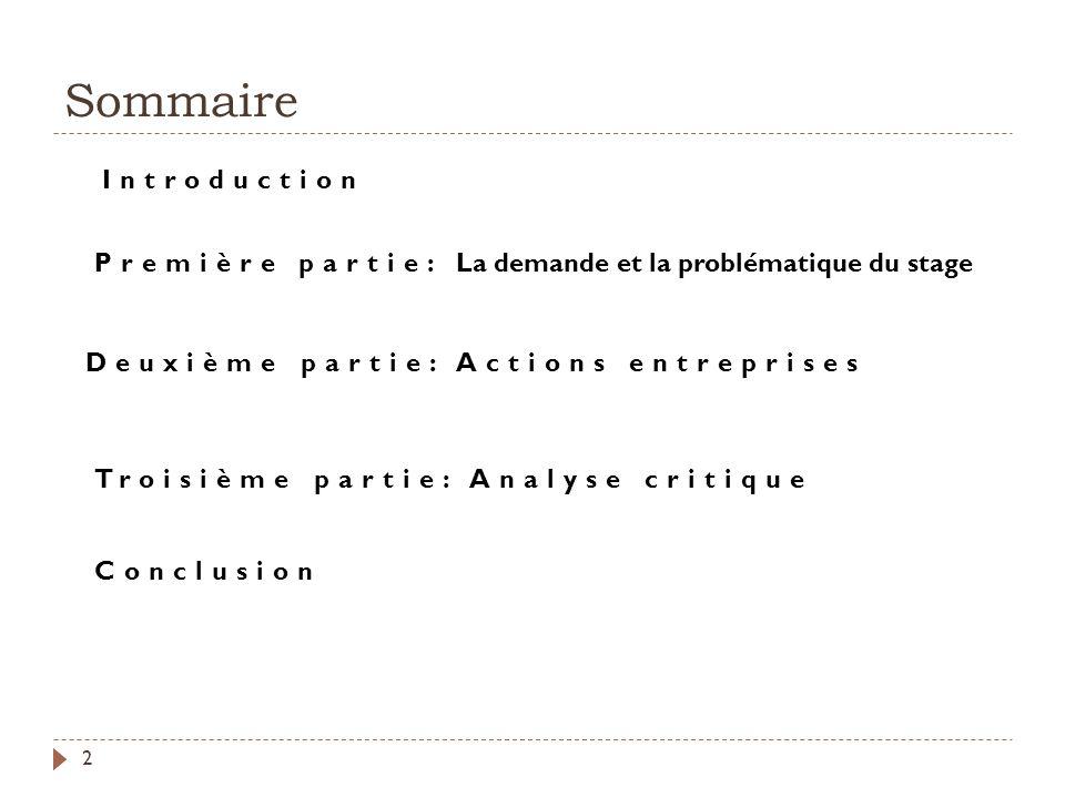 Sommaire 2 Première partie: La demande et la problématique du stage Deuxième partie: Actions entreprises Troisième partie: Analyse critique Introducti