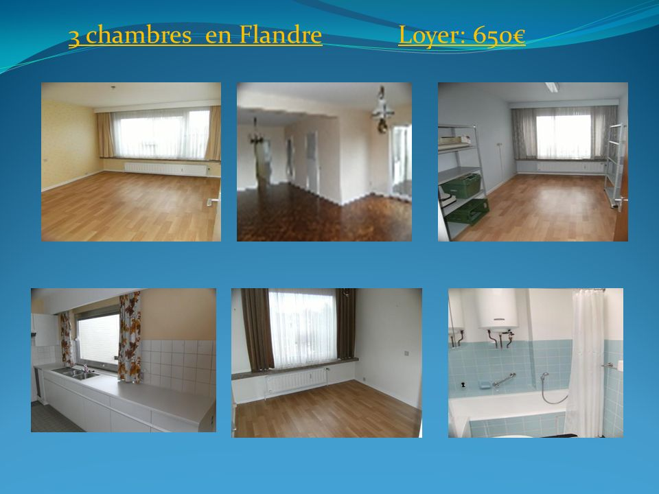 3 chambres en FlandreLoyer: 650