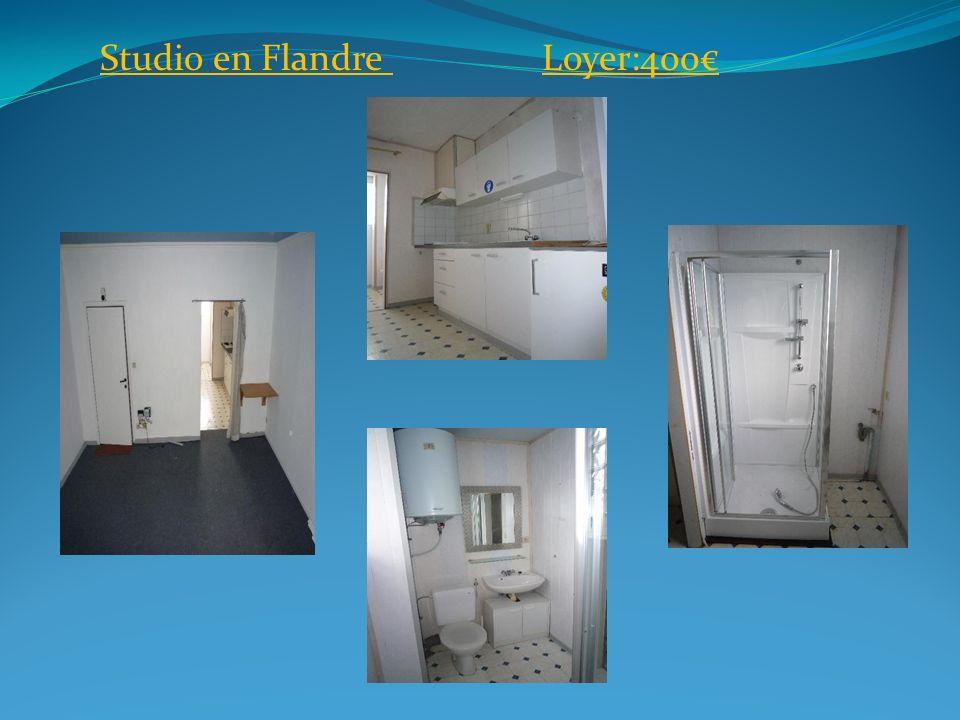 1 chambre à BruxellesLoyer: 500