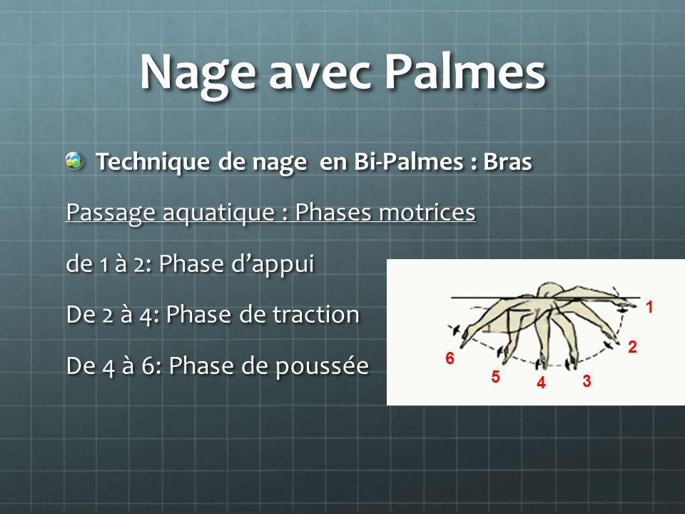 Nage avec Palmes Technique de nage en Bi-Palmes : Bras Passage aquatique : Phases motrices de 1 à 2: Phase dappui De 2 à 4: Phase de traction De 4 à 6