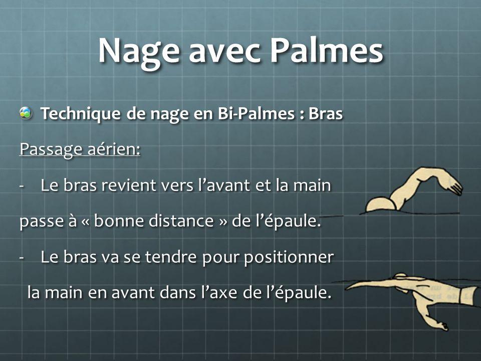 Nage avec Palmes Technique de nage en Bi-Palmes : Bras Passage aérien: -Le bras revient vers lavant et la main passe à « bonne distance » de lépaule.