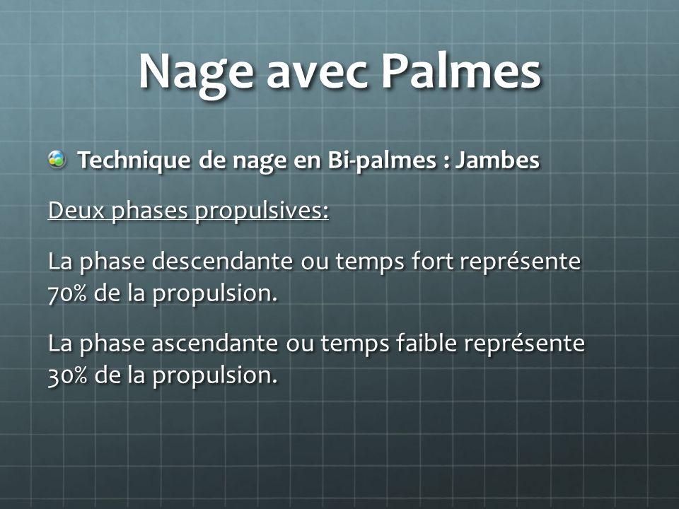 Nage avec Palmes Technique de nage en Bi-palmes : Jambes Deux phases propulsives: La phase descendante ou temps fort représente 70% de la propulsion.