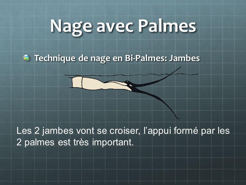 Nage avec Palmes Technique de nage en Bi-Palmes: Jambes Les 2 jambes vont se croiser, lappui formé par les 2 palmes est très important.