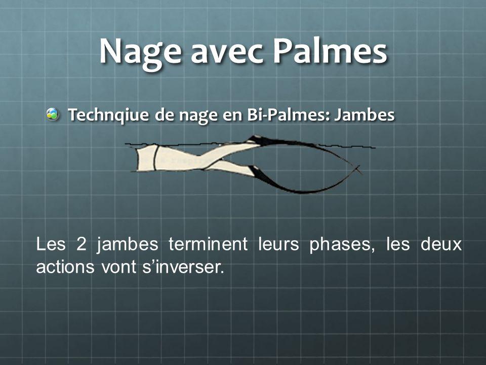 Nage avec Palmes Technqiue de nage en Bi-Palmes: Jambes Les 2 jambes terminent leurs phases, les deux actions vont sinverser.