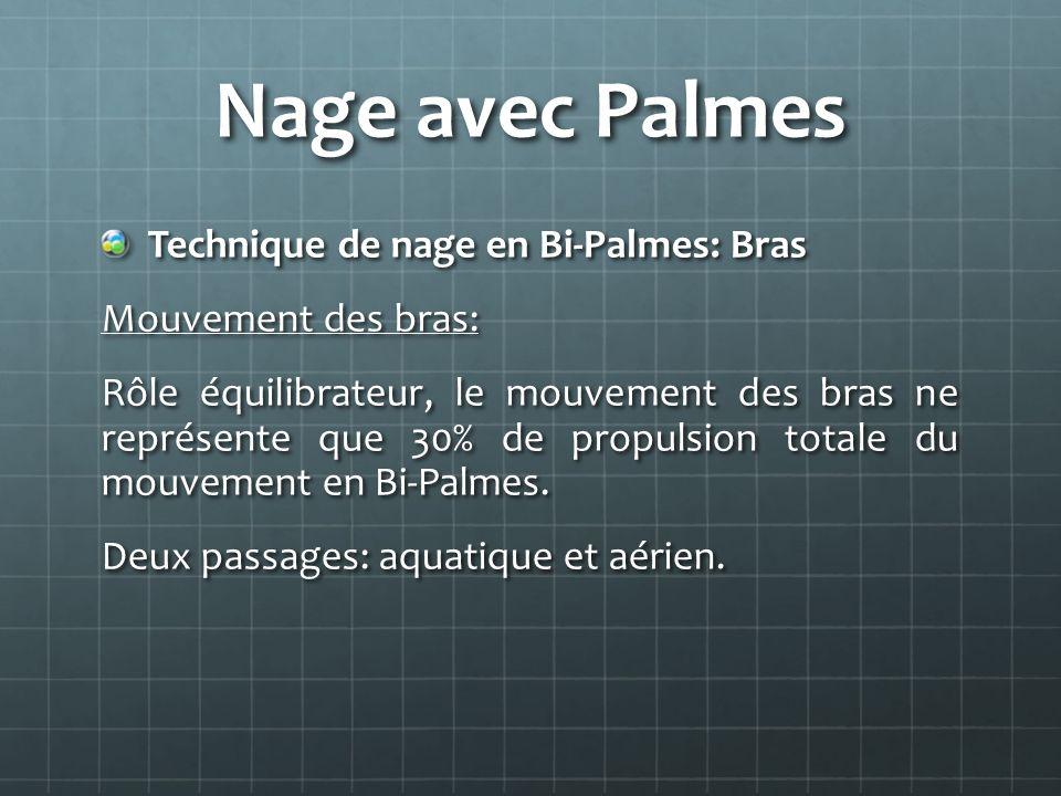 Nage avec Palmes Technique de nage en Bi-Palmes: Bras Mouvement des bras: Rôle équilibrateur, le mouvement des bras ne représente que 30% de propulsio