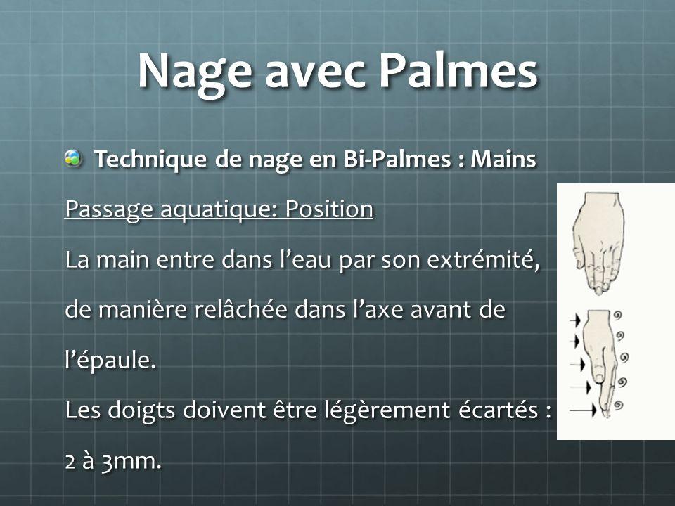 Nage avec Palmes Technique de nage en Bi-Palmes : Mains Passage aquatique: Position La main entre dans leau par son extrémité, de manière relâchée dan