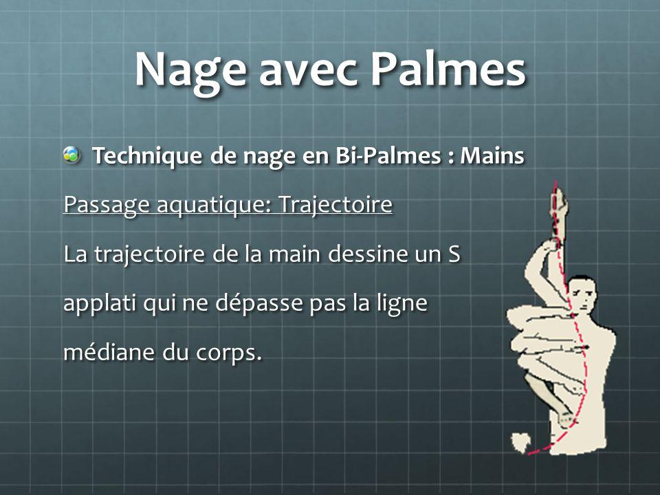 Nage avec Palmes Technique de nage en Bi-Palmes : Mains Passage aquatique: Trajectoire La trajectoire de la main dessine un S applati qui ne dépasse p