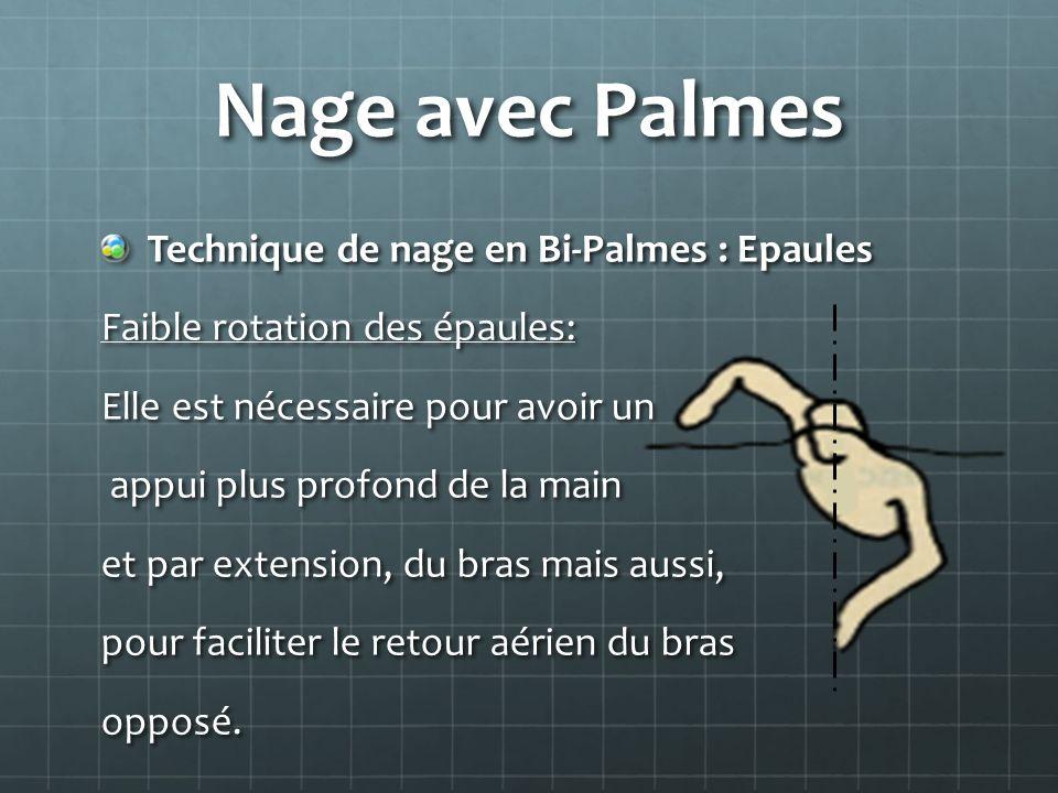 Nage avec Palmes Technique de nage en Bi-Palmes : Epaules Faible rotation des épaules: Elle est nécessaire pour avoir un appui plus profond de la main