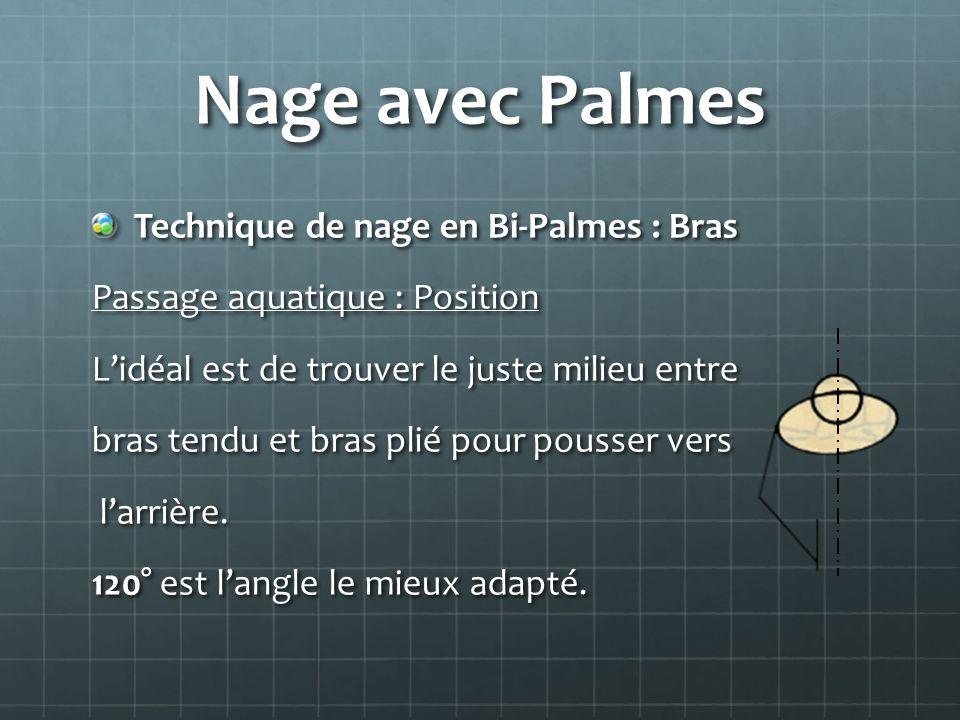 Nage avec Palmes Technique de nage en Bi-Palmes : Bras Passage aquatique : Position Lidéal est de trouver le juste milieu entre bras tendu et bras pli