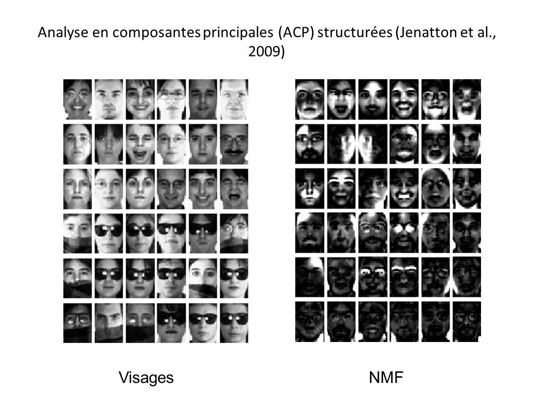 Analyse en composantes principales (ACP) structurées (Jenatton et al., 2009) VisagesNMF