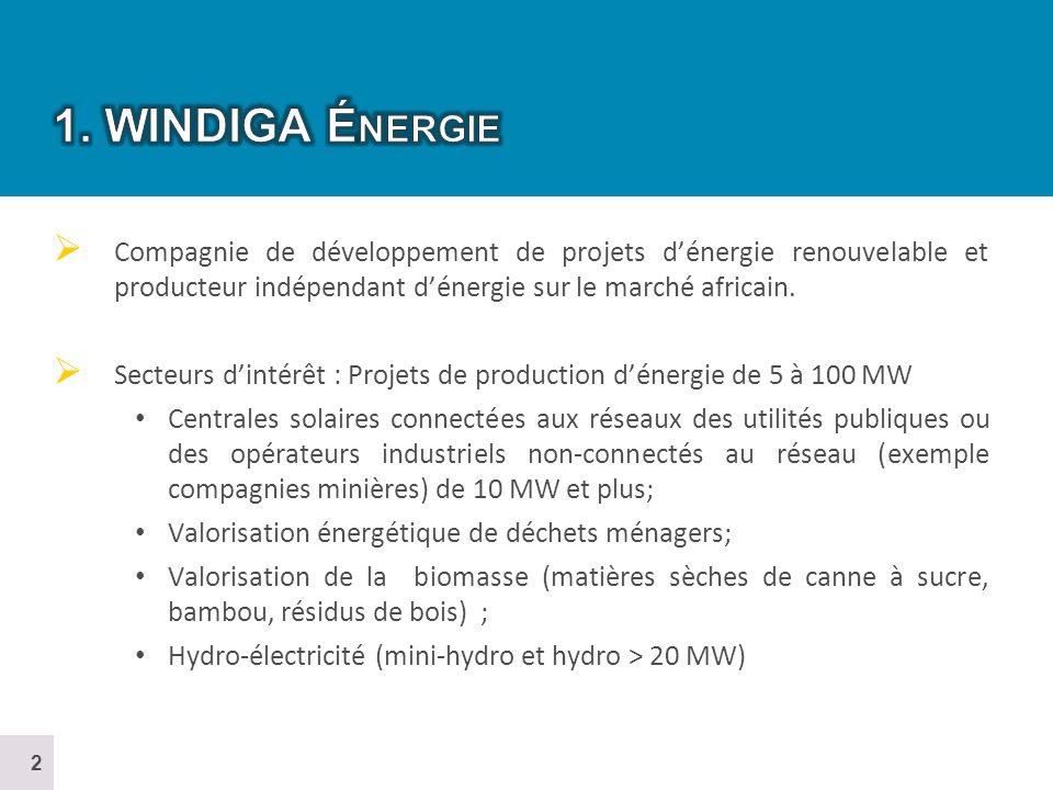 Le nombre de projets construits, en construction ou en développement en Afrique est (IRENA) : Mini-hydro : 24 (20 MW et moins) Hydro grands projets : 8 Éolien : 31 Solaire : 14 Géothermie : 4 LAfrique dispose dun énorme potentiel pour les énergies vertes avec des variantes selon le potentiel local et régional.