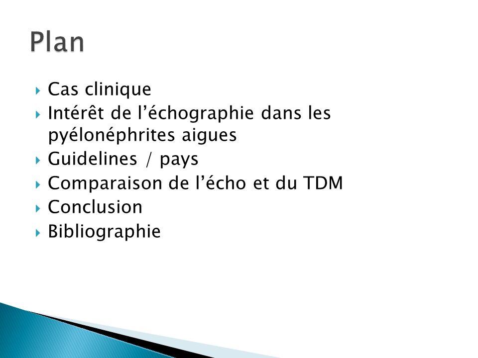 Cas clinique Intérêt de léchographie dans les pyélonéphrites aigues Guidelines / pays Comparaison de lécho et du TDM Conclusion Bibliographie