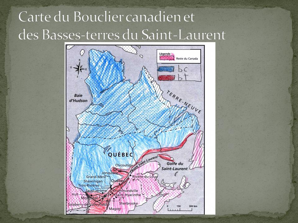 Les Basses-terres du Saint-Laurent Terrain plat et peu élevé par rapport à la mer Terres extrêmement fertiles Présence de forêts : la forêt mixte Hydrographie: peu deau