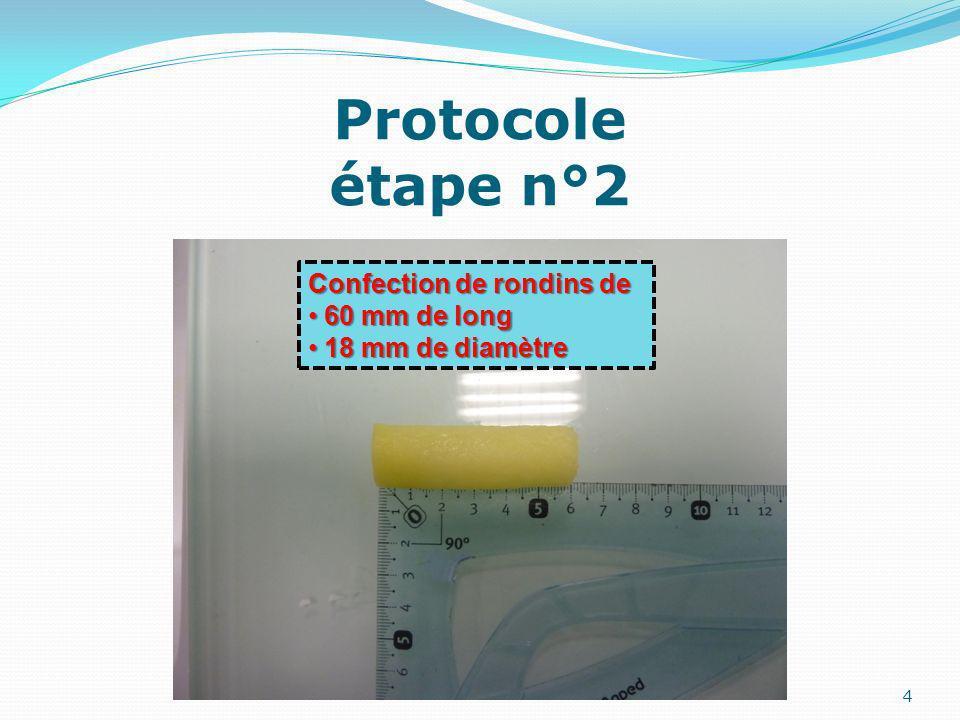Protocole étape n°3 5 Témoin en boite de Pétri : 60 mm de long 60 mm de long 18 mm de diamètre 18 mm de diamètre Concentrations en saccharose croissantes