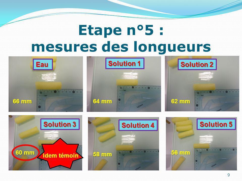 Etape n°5 : mesures des longueurs 9 66 mm 64 mm 62 mm 60 mm 58 mm 56 mm Eau Solution 2 Solution 1 Solution 3 Solution 4 Solution 5 Idem témoin