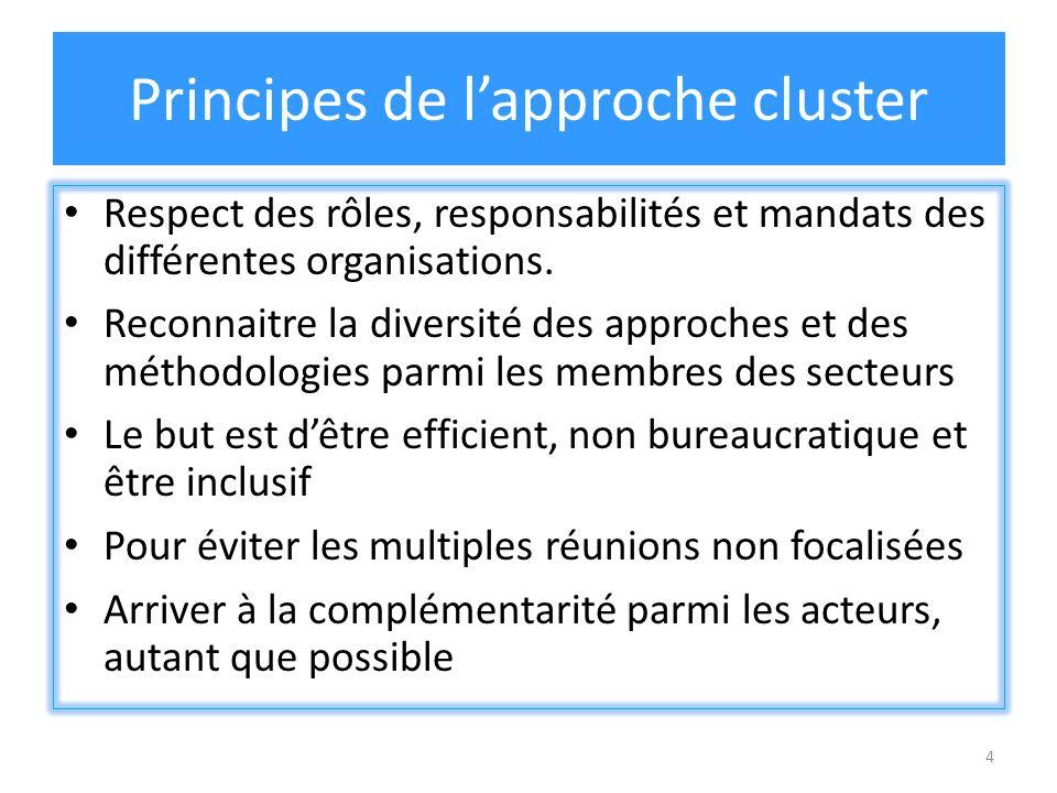 4 Principes de lapproche cluster Respect des rôles, responsabilités et mandats des différentes organisations. Reconnaitre la diversité des approches e