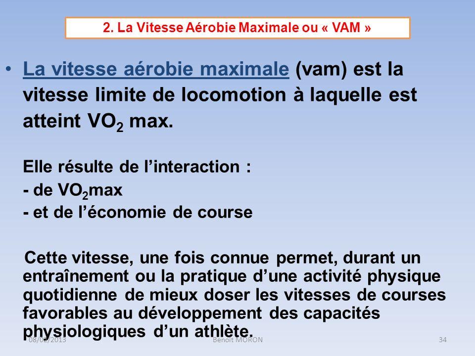 La vitesse aérobie maximale (vam) est la vitesse limite de locomotion à laquelle est atteint VO 2 max. Elle résulte de linteraction : - de VO 2 max -