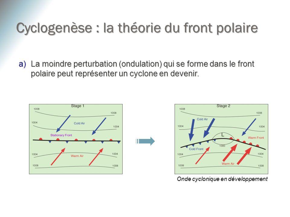 a)La moindre perturbation (ondulation) qui se forme dans le front polaire peut représenter un cyclone en devenir. Onde cyclonique en développement Cyc