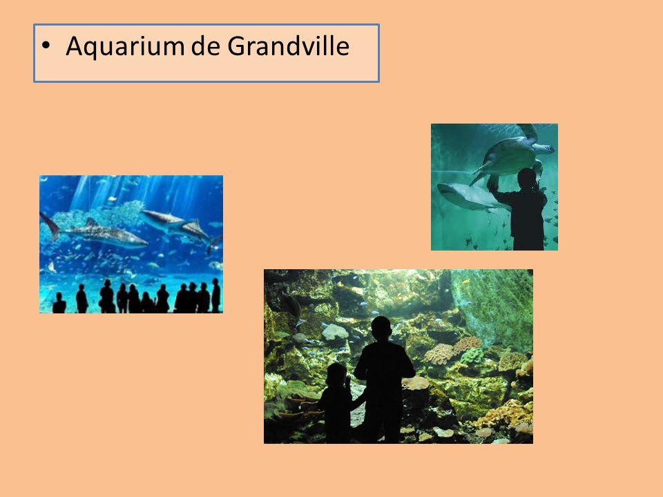 Aquarium de Grandville