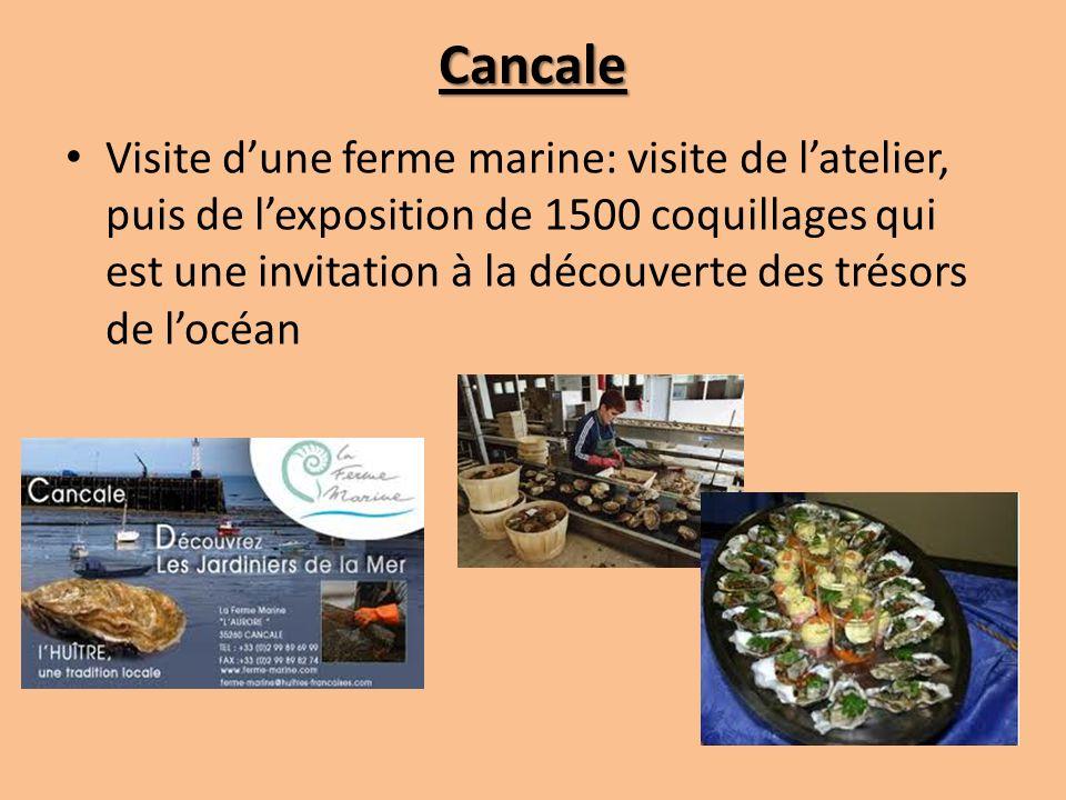 Cancale Visite dune ferme marine: visite de latelier, puis de lexposition de 1500 coquillages qui est une invitation à la découverte des trésors de locéan