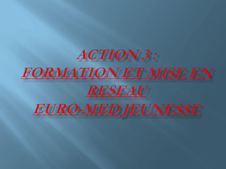 Laction formation et mise en réseau inclue des projets qui soutiennent les organisations de jeunesse et les acteurs du domaine de la jeunesse dans la région Euro-Méditerranéenne (animateurs jeunesse, formateurs, jeunes).