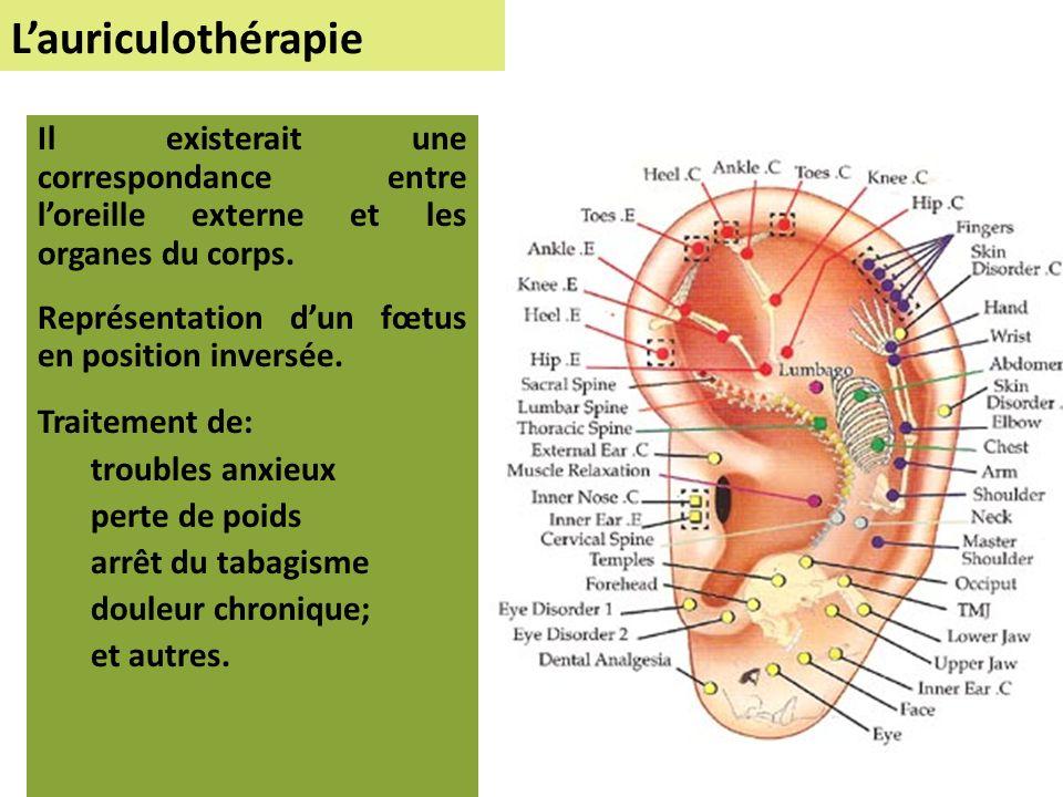 Lauriculothérapie Il existerait une correspondance entre loreille externe et les organes du corps.