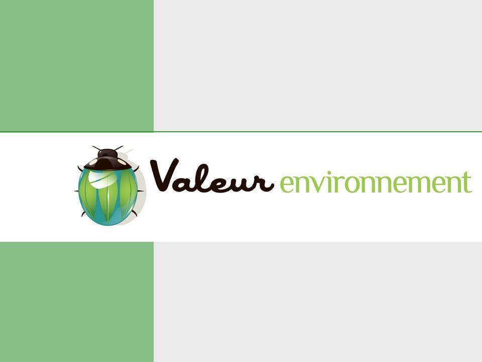 La pertinence du process « Eurocover SP » En réponse à toutes ces contraintes, Valeur Environnement propose la mise en œuvre dune membrane technique de remédiation, coulée en place, se positionnant en alternative aux bâches installées sur les sites en cours de dépollution, ou lors des investigations détudes des sites pollués.