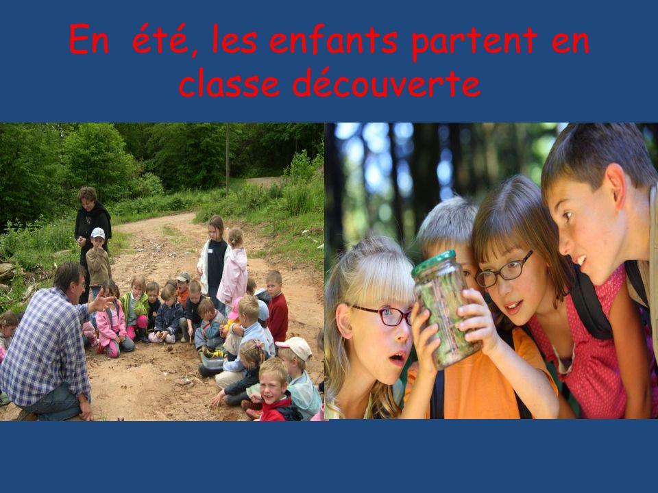 En été, les enfants partent en classe découverte