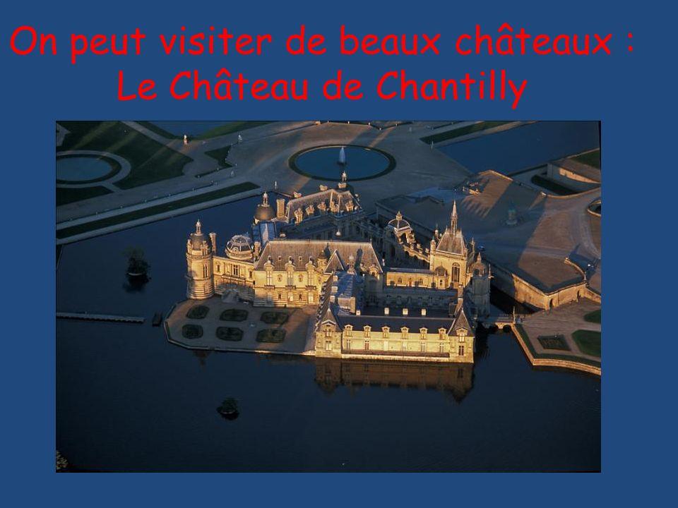 On peut visiter de beaux châteaux : Le Château de Chantilly
