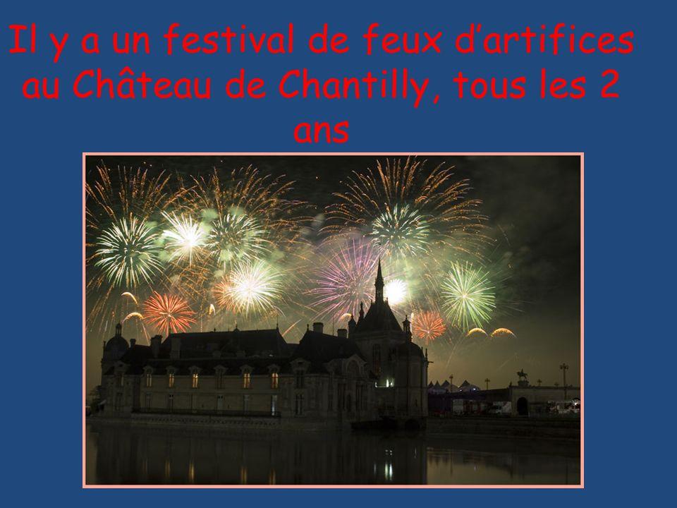 Il y a un festival de feux dartifices au Château de Chantilly, tous les 2 ans
