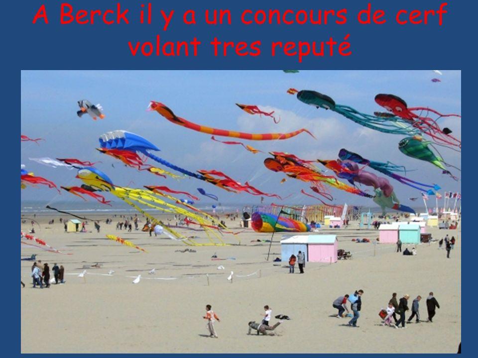 A Berck il y a un concours de cerf volant tres reputé