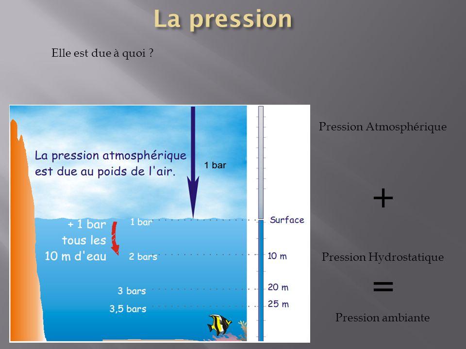 Elle est due à quoi ? Pression Atmosphérique + Pression Hydrostatique = Pression ambiante