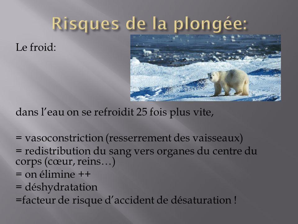 Le froid: dans leau on se refroidit 25 fois plus vite, = vasoconstriction (resserrement des vaisseaux) = redistribution du sang vers organes du centre du corps (cœur, reins…) = on élimine ++ = déshydratation =facteur de risque daccident de désaturation !