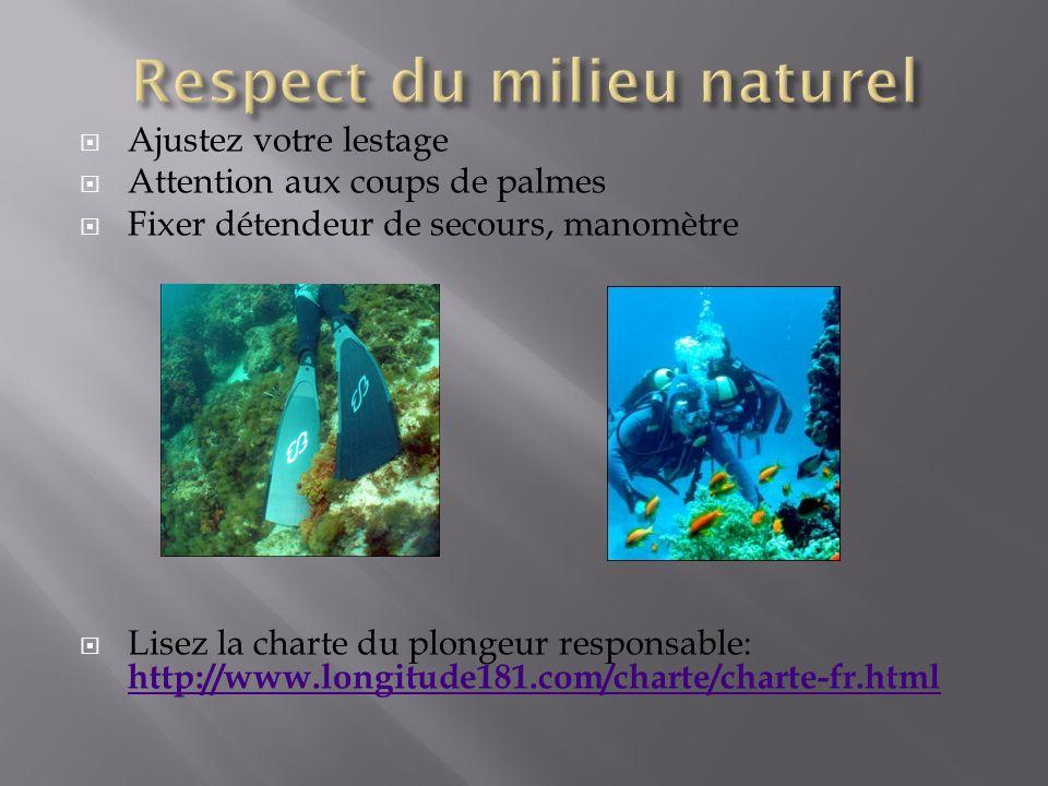 Ajustez votre lestage Attention aux coups de palmes Fixer détendeur de secours, manomètre Lisez la charte du plongeur responsable: http://www.longitude181.com/charte/charte-fr.html http://www.longitude181.com/charte/charte-fr.html
