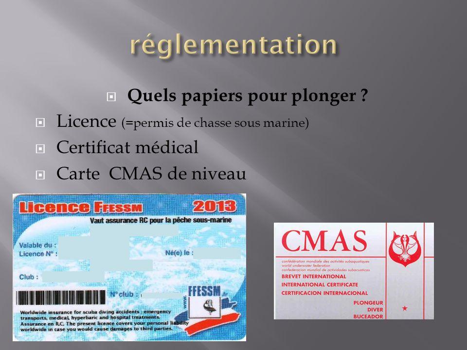 Quels papiers pour plonger ? Licence (=permis de chasse sous marine) Certificat médical Carte CMAS de niveau