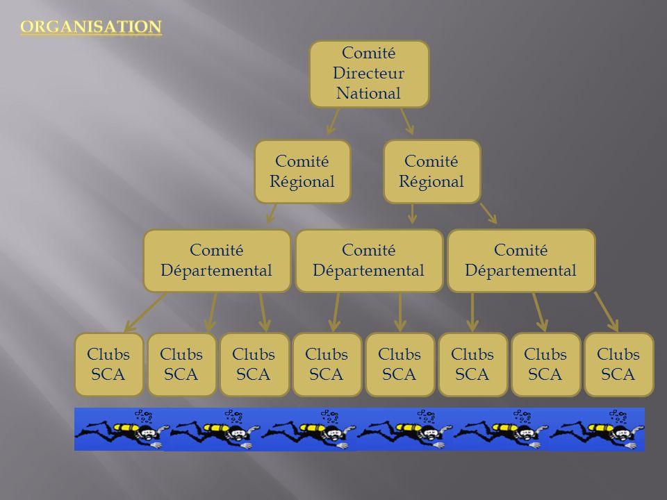 Comité Directeur National Comité Régional Comité Départemental Clubs SCA Clubs SCA Clubs SCA Clubs SCA Clubs SCA Clubs SCA Clubs SCA Clubs SCA