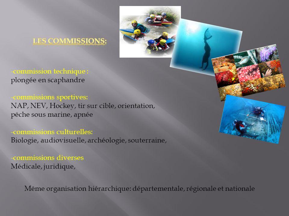 -commission technique : plongée en scaphandre -commissions sportives: NAP, NEV, Hockey, tir sur cible, orientation, pêche sous marine, apnée -commissi