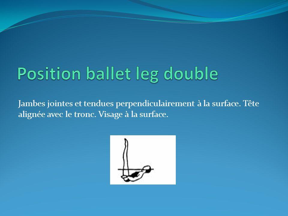 Jambes jointes et tendues perpendiculairement à la surface. Tête alignée avec le tronc. Visage à la surface.