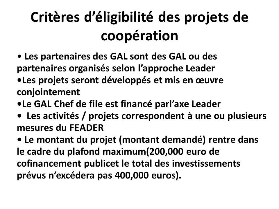 Critères déligibilité des projets de coopération Les partenaires des GAL sont des GAL ou des partenaires organisés selon lapproche LeaderLes projets s