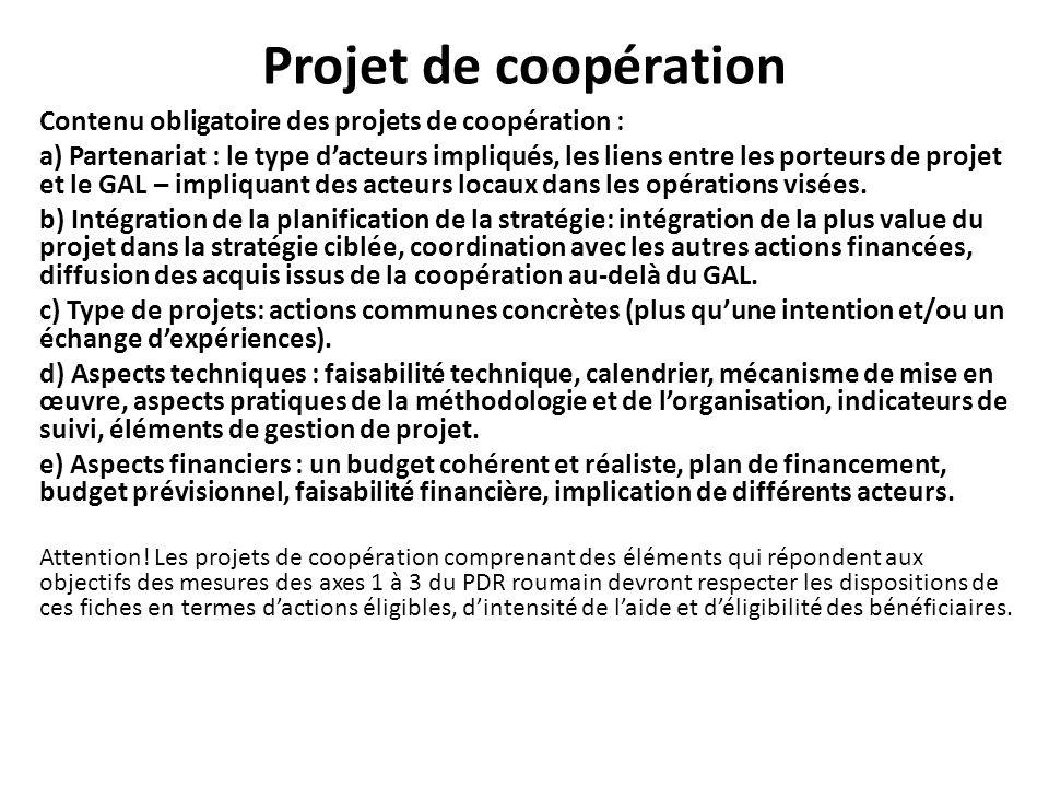 Projet de coopération Contenu obligatoire des projets de coopération : a) Partenariat : le type dacteurs impliqués, les liens entre les porteurs de pr