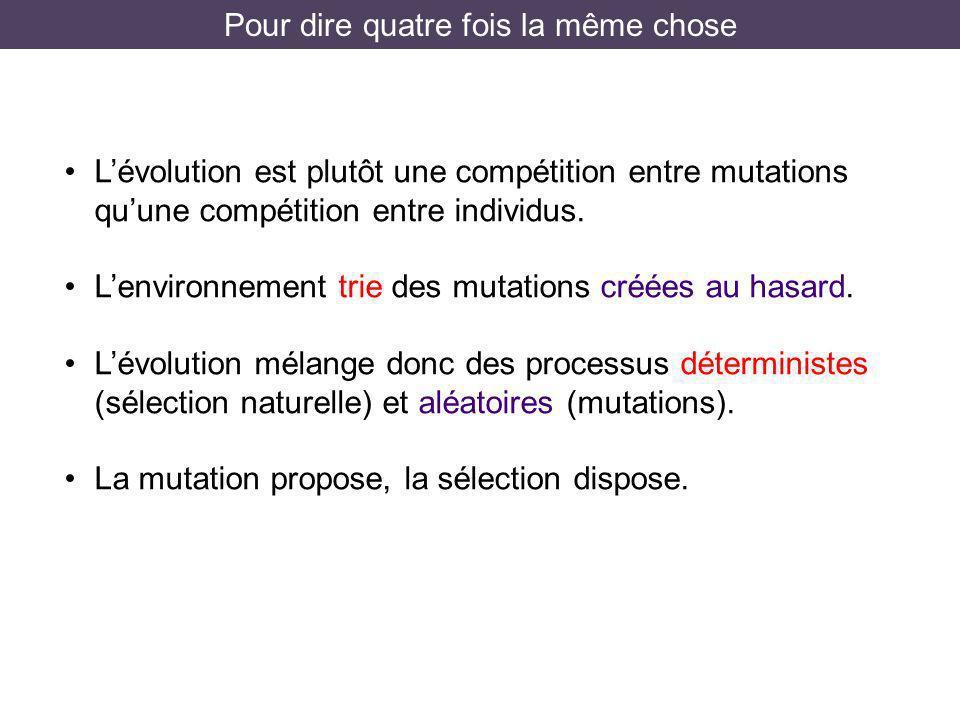 Pour dire quatre fois la même chose Lévolution est plutôt une compétition entre mutations quune compétition entre individus. Lenvironnement trie des m
