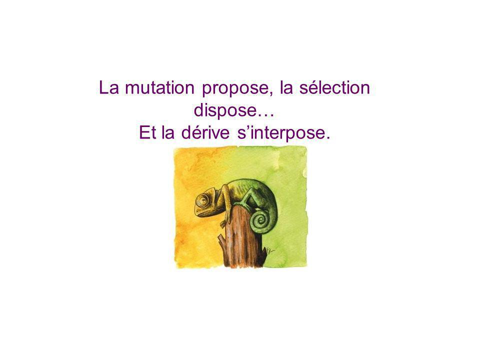La mutation propose, la sélection dispose… Et la dérive sinterpose.
