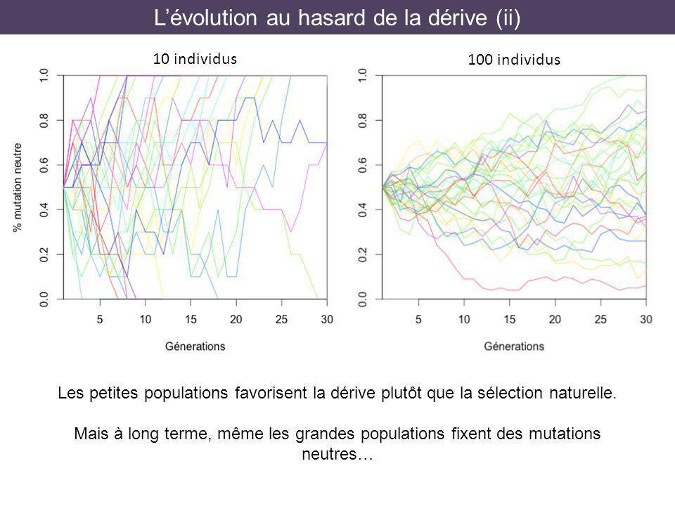 Lévolution au hasard de la dérive (ii) 100 individus 10 individus Les petites populations favorisent la dérive plutôt que la sélection naturelle. Mais